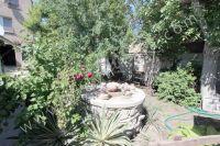 Снять жилье в Феодосии: частный сектор в центре у моря - Много красивых растений