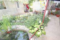 Снять дом в Феодосии без посредников - Небольшой красивый двор