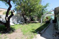 Снять жилье в Феодосии: частный сектор в центре у моря - Большой зеленый двор
