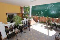Гостиница на Черноморской набережной Феодосии  - Много цветов и растений во дворе